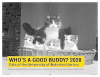 Who's a good buddy? 2020 Cats of the University of Waterloo Library