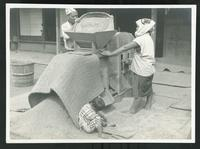 Adults processing rice with child seated at their feet