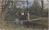 Unidentified: two couples posed on a log over a stream, location Buffalo?