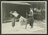 Workers threshing rice